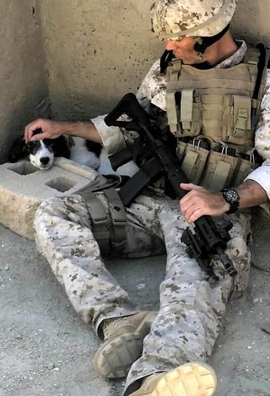 https://vandalamagazine.files.wordpress.com/2014/08/rockstar-energy-drink-mayhem-festival-puppy-rescue-mission.jpg