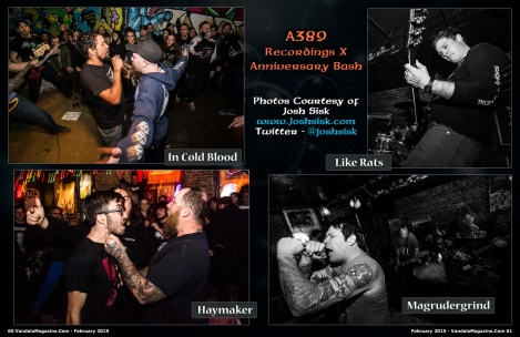A389 Recordings X Anniversary Bash Coverage From February 2015 Vandala Magazine