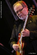 Donald Fagen Steely Dan - Coachella 2015