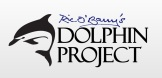 The Dolphin Project Logo