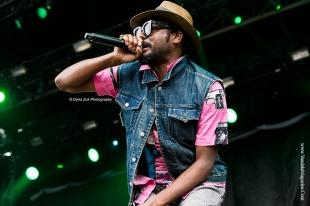 October Vandala '15 - Sonic Boom Festival - Photo Credit Dana Zuk Photography (23)