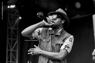 October Vandala '15 - Sonic Boom Festival - Photo Credit Dana Zuk Photography (28)