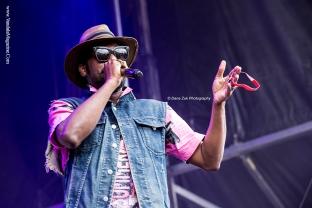 October Vandala '15 - Sonic Boom Festival - Photo Credit Dana Zuk Photography (33)