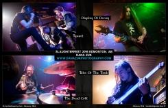 February 2016 Vandala Magazine Slaughter Fest Dana Zuk Photography 1