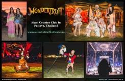 February 2016 Vandala Magazine Wonderfruit Festival