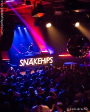 Snakehips at Out Side Lands After Party