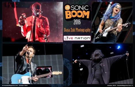 sonic-boom-october-2016-vandala-magazine-dana-zuk